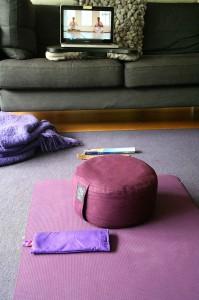 OMEGA10_Yoga@Home