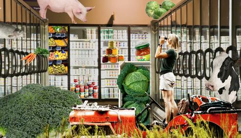 Supermarktsafari